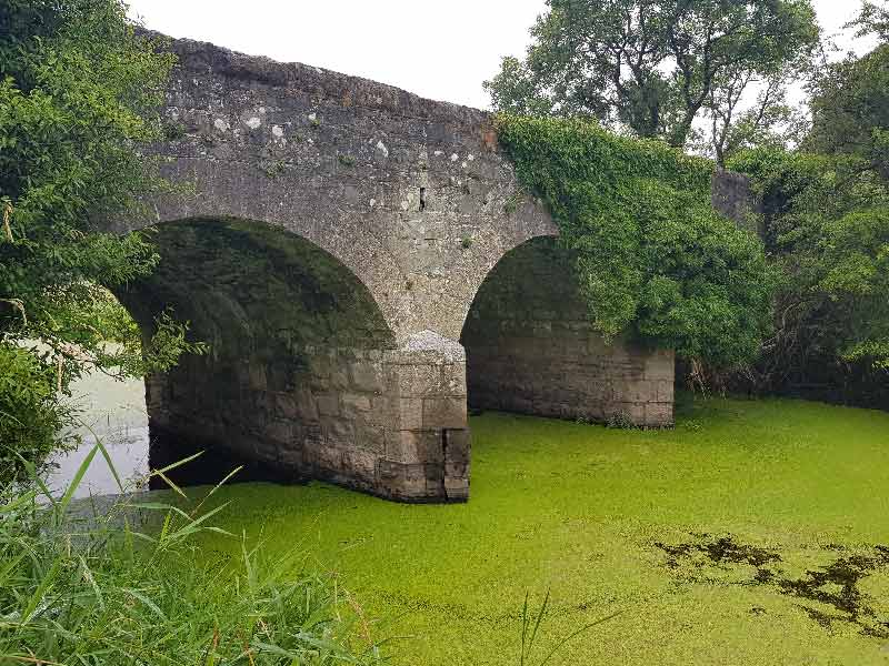 nutrient-enrichment-of-the-dromore-river